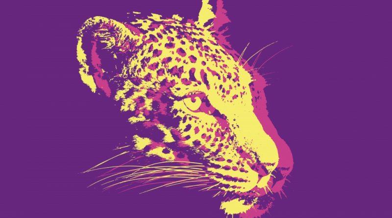 visuel leopard